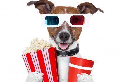 3D Filme leihen